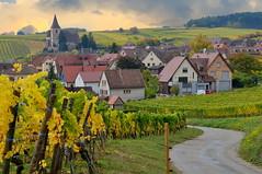 Hunawihr (Haut-Rhin, F) (pietro68bleu) Tags: village vignoble églisefortifiée automne