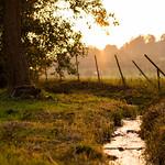 Sunset River thumbnail