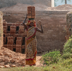 Who is thick as a brick? (ybiberman) Tags: varanasi india utterpradesh woman working bricks brickfactory pile carrying sari dust barefoot people streetphotography candid tough elegant