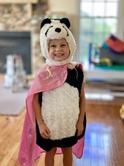 Madeleine's panda costume for Halloween. Of course, she added the pink super cape herself. (dionhinchcliffe) Tags: moblog iphonepics