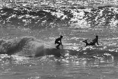 IMG_6945 (palbritton) Tags: surf surfing surfer singlefin longboard longboardsurfing surfcontest