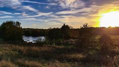 Dissolution (Mellisapix) Tags: sky biodiversity wildlife countryside wild nature lanscape land lake goldenhour sundown twilight nightfall evening eve dusk decent setting ending sunset daysend dissolution