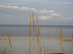 es dämmert überm Ostseestrand (Sophia-Fatima) Tags: ostsee balticsea scharbeutz ostholstein schleswigholstein deutschland strand beach meer mer