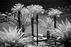 TENO_170722_0413 (Raico Rosenberg.com) Tags: 3leggedthing 3lt 720nm atlantik bild blackandwhite canaryislands foto fotografia fotografie hitech hitechfilters kanarischeinseln lucroit landschaft natur photo photography sony spanien stein teide teno wasser agua atlantic beach españa faro formatthitech image imagen infrarojo infrared infrarot islascanarias landscape leuchtturm lighthouse meer naturaleza nature ocean olas outdoor ozean paisaje piedra rock santiagodelteide sea seascape spain stock tenerife teneriffa traumlandschaften tripods volcano vulcan vulkan water waves wellen