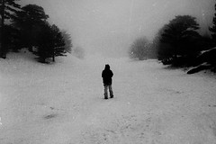 (Victoria Yarlikova) Tags: snow monochrome snowfall winter mtetna