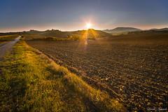 Orizzonti bucolici (Danilo Agnaioli) Tags: collinedelperugino sole autunno umbria perugia natura canon6d sigma12 24 terra