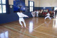 DSC00227 (retro5562) Tags: martialartssport karatemartialart karatekata kata kumite karatekumite teamsport gkr r21 hubtournament karate martialarts 2018 wgtn wellington waterlooschool waterloo lowerhutt newzealand ring1 ring2 male female