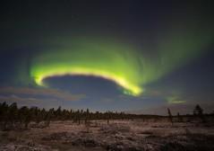 aurora 26.10.2018 (Hotel Korpikartano) Tags: green auroraborealis aurora autumn revontulet northernlights korpikartanofi hotelkorpikartano inarilapland laplandfinland lappi lapland irix15mm irixlens