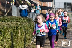 """2018_Nationale_veldloop_Rias.Photography19 • <a style=""""font-size:0.8em;"""" href=""""http://www.flickr.com/photos/164301253@N02/44859992041/"""" target=""""_blank"""">View on Flickr</a>"""