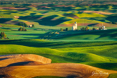 Palouse Farm Land_01 (John Bielick) Tags: 2018 america colfax copyrighted johnbielick northamerica palouse park photogtrekker statepark steptoebuttestatepark thestates theunitedstates us usa unitedstates unitedstatesofamerica washington whitmancounty farmland field rolling hill green farming scenic