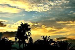 Feliz Martes!! (ZAP.M) Tags: nwn martesdenubes nubes cielo amanecer contraluz chiclana cádiz andalucía españa flickr zapm mpazdelcerro nikon nikond5300