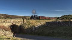 Grosmont Train (4486Merlin) Tags: 80136 brstd4mt264t england europe exbr heritagerailways northeast northyorkshiremoorsrailway railways steam transport unitedkingdom moorgates northyorkshire gbr raf100 nymrraf100anniversarygala autumnsteamgala