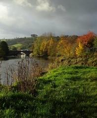 Mid autumn medley 4 (Phil Gayton) Tags: water grass tree foliage field sky cloud bridge riverside walk river dart totnes devon uk