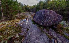 Störsvik, South Finland. (Esa Suomaa) Tags: esasuomaa finland autumn forest trail woods trees olympusomd zuikopro europe