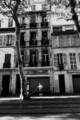 Les timides se cachent derrière les arbres... (woltarise) Tags: streetwise iphone7 marseille france promenade chien femme arbres