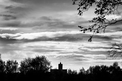 Bit of a black and white day (lewi1553) Tags: monochrome mono cold autumn outdoors day dreichday dullweather scotland lanarkshire nature silhouettesagainstthesky blackandwhite bnw greyday