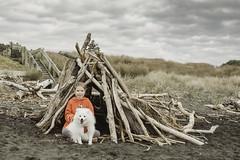 Gloomy Day at the Beach (KiwiMiriam) Tags: beach sand surf fujixseries xpro2 mirrorless newzealand blacksand girl dog white fluffy hut driftwood japanesespitz
