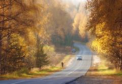 Осень,золотая... (olegkulishov) Tags: пейзаж осень природа импрессионизм дороги