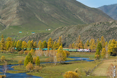 Near Schatan station... (N.Batkhurel) Tags: season autumn locomotive landscape trainspotting train trees transport 24120mm 2zagal passengertrain railway railfan river mongolia monrailpic mountian ngc nikon nikond5200 nikkor 70200mm