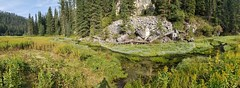 Spearfish Creek (Lead, South Dakota) (@CarShowShooter) Tags: geo:lat=4425416667 geo:lon=10392250000 geotagged hanna lead southdakota unitedstates usa blackhills blackhillsnationalforest canamhighway countryroad179 creek dew flowers lawrencecounty leadsouthdakota micropolitanstatisticalarea nature pasture river southdakotatouristattraction southdakotatravel southdakotavacation southlawrenceunorganizedterritory spearfishcreek spring topaz touristattraction travel travelphotography vacation vacationphotos water