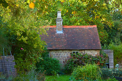 Church Cottage Garden (Adam Swaine) Tags: cottage cottagegarden gardens autumn autumncolours autumnkent kent england english englishvillages village villages canon counties county trees leaves beautiful britain british uk ukcounties rural ruralvillages ruralkent flora