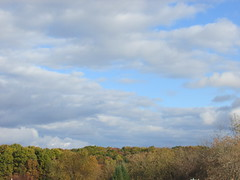 Late October colors (creed_400) Tags: belmont west michigan autumn fall sky blue clouds woods