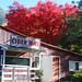 Cider Mill Autumn, Oak Glen, CA 10-18