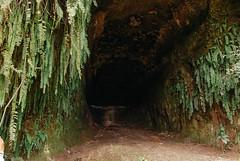 (Cak Bowo) Tags: alam cave gua landscape nature bangkalan eastjava indonesia bukitjaddih madura nikon d80 nikond80 tokina 1116mm tokina1116mm tokina1116mmf28 dslr digital