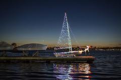 Charles River_20181208_018 (falconn67) Tags: boston night charlesriver river water lights boat sailboat communityboating boating pier dock moon waxingcrescent crescentmoon dusk sunset city christmas christmaslights