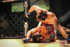 8Y9A6751-218 (MAZA FIGHT JAPAN) Tags: shooto mma grachan mixed martial arts onechampionship tokyo sakamoto pancrase deep gracie renzogracie angelalee hasegawa vvmei aokishinya fight fighting otacity mixedmartialarts cage ring boxe boxing