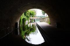 Lychen (RayKippig) Tags: lychen brandenburg germany deutschland town mühlenbach bach creek tunnel circle