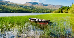 Fishing (coltrain2011) Tags: espedal norway espedalsvannet troutfishing oter