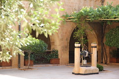 (g ü L â L e) Tags: mardin morgabriel manastır bahçe avlu yusuf nazanbekiroğlu