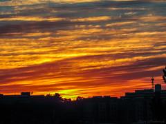 Burlington MA Sunrise_8736 (smack53) Tags: smack53 sunrise morning morningsky paintedsky sky clouds autumn autumnseason fall fallseason burlington massachusetts canon powershot sx530hs canonpowershotsx530hs