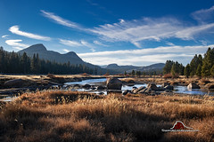 Autumn in Tuolumne Meadows (Darvin Atkeson) Tags: tuoloumne meadows sierra high country nevada sierranevada california yosemite nationalpark national park grass forest river rocks sky domes granite pines tioga pass autumn fall travel united states unitedstates us wilderness scenery scenic landscape highway highcountry darv darvin atkeson lynneal yosemitelandscapescom visipix visipixcollections