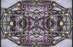 Connective (Paul B0udreau) Tags: photomanipulation columbus ohio sotn shockofthenew specialexoticaward