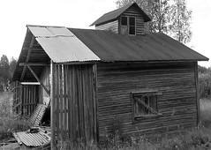 WP_20180714_05_38_17_Pro (www.ilkkajukarainen.fi) Tags: blackandwhite mustavalkoinen monochrome lato barn happy life summer kesä 2018 suomi finland finlande travel travelling eu europa scandinavia