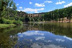 Lac Ouiouane in spring (Saf') Tags: morocco maroc middle atlas moyen ouiouane lac lake nature trees ifrane ain leuh mrirt khenifra flore africa
