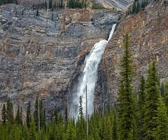 Canada's 2nd Highest Waterfall (Philip Kuntz) Tags: takakkahfalls waterfall falls yoho yohonationalpark field britishcolumbia canada