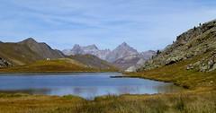 lac du lauzanier (b.four) Tags: montagne montagna mountain lago lake lac lauzanier larche hauteubaye alpesdehauteprovence coth5