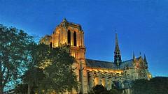 Paris la nuit (2016 09 06) no. 51 (Carl Campbell) Tags: notredamedeparis nikond5200 paris france architecture night