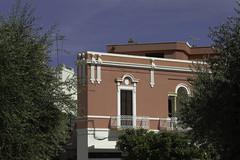 Puglia 2016-60 (walter5390) Tags: puglia apulia italia italy south sud meridione meridionale polignano mare ulivo olive tree blue sky cielo blu red house villa casa rossa architettura architecture
