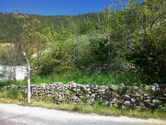 À quoi ressemble la vie dans son village? (Gilbert-Noël Sfeir Mont-Liban) Tags: kesserwan montliban liban mountlebanon lebanon village