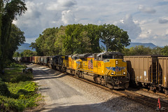 NS 362 at North Tunnel (travisnewman100) Tags: norfolk southern csx train railroad freight manifest control point north tunnel chattanooga subdivision tennessee union pacific up gecx emd ge 362 sd70ah sd70m c408w sd60m