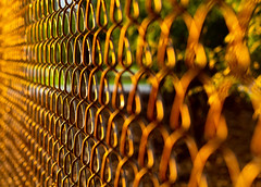 Sunset Spirals (DocktorGonzoPhotography) Tags: sunset sun afternoon outdoors canon canon50mm canon50mmf18 canonef50mm18 canonef canonef50mm niftyfifty closeup patterns pattern spiral spirals composition repreat repeating fence chainfence art bokehblur bokehbliss bokeh bokehful bokehlicious bokehdreams bokehmagic bokehcolors reflection reflections shine bright dof depthoffield exposure brilliantdof aperature canonrebel t6 canonrebelt6 eaststroudsburg university college campus lines abstract abstraction abstractart abstractphotography abstractphoto abstractshot abstractsunset abstractgenius abstractions abstracts perceptions perception shiny macroandpatterns macropatterns macrodreams macrodream macroandcloseup macrocloseup