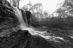 Misty Weeping Rock    Wentworth Falls (David Marriott - Sydney) Tags: newsouthwales australia au nsw blue mountains weeping rock wentworth falls waterfall mist fog rain cloud water creek river