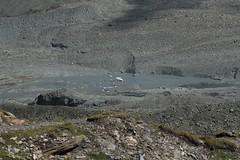 lac glaciaire (bulbocode909) Tags: valais suisse valdesdix lacs montagnes nature icebergs moraine eau rochers lacsglaciaires vert bleu