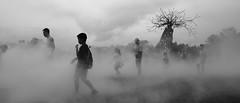 Journey in the fog (Dreamyplanets) Tags: fujifilm fog