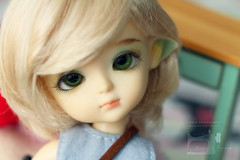 Girls (Emmie Ame) Tags: latiyellow latidoll doll toy bjd balljointeddoll ruki elf magician emmietomaru