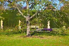 Walled Garden @ Polesden Lacy (Adam Swaine) Tags: polesdenlacey nationaltrust gardens england english britain british seasons uk ukcounties trees flowers garden walledgarden surrey counties countryside canon fourseasons nature